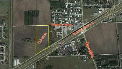 Harlingen Residential Lots & Land For Sale: 00 W Expressway 83