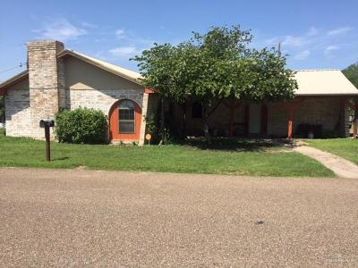 McAllen Single Family Home For Sale: 3812 Ware Del Norte Street