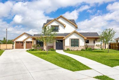 Edinburg Single Family Home For Sale: 4104 Country Meadows North Drive