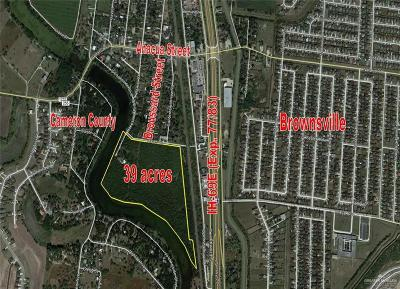 Cameron County Residential Lots & Land For Sale: Hayes Street