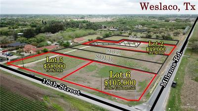 Weslaco Residential Lots & Land For Sale: 1658 W 18th Street