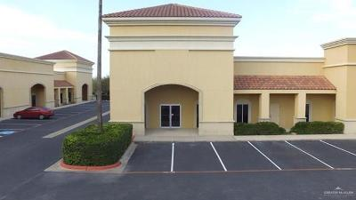 Weslaco Commercial For Sale: 505 Angelita Drive #7
