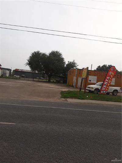 Weslaco Commercial For Sale: 3900 E Business 83 Highway