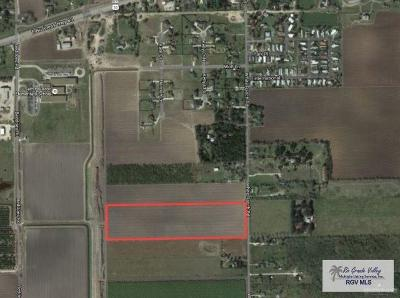 Cameron County Residential Lots & Land For Sale: 19 Acres S White Ranch Road