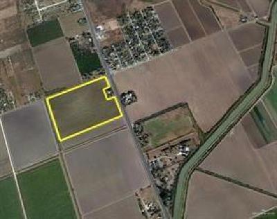 Weslaco Residential Lots & Land For Sale: N International Boulevard