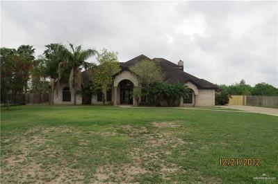 San Juan Single Family Home For Sale: 1808 S Piedra Negras Road