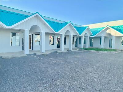 Mission Commercial For Sale: 713 N Bentsen Palm Drive