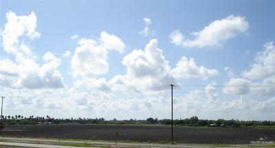Cameron County Residential Lots & Land For Sale: Tbd Expressway 83 Highway
