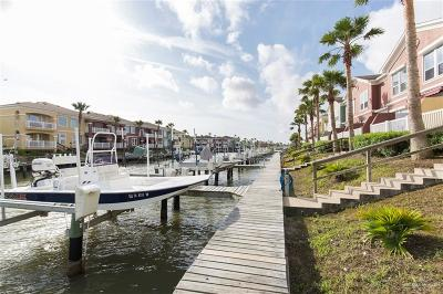 Cameron County Condo/Townhouse For Sale: 9 Harbor View