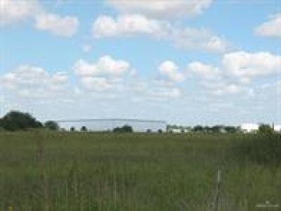 Edinburg Residential Lots & Land For Sale: 419 W Palm Drive