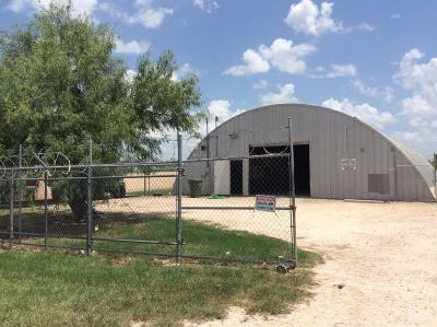 Weslaco Commercial For Sale: 4032 E Moreland Drive
