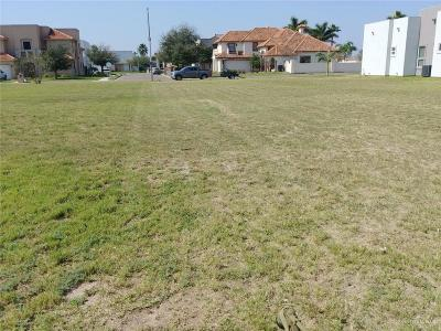 McAllen Residential Lots & Land For Sale: 2121 S 49th Street