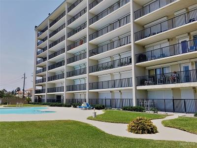 Cameron County Condo/Townhouse For Sale: 7000 Padre Boulevard #803