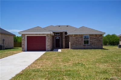 Mercedes Single Family Home For Sale: 821 Alexandria Avenue