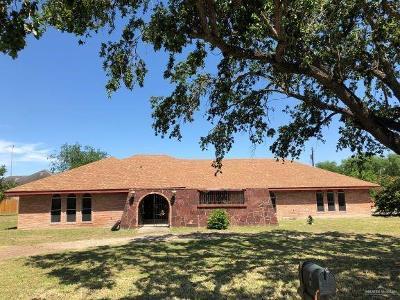 Weslaco Single Family Home For Sale: 903 S Border Avenue