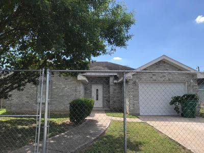 Pharr Single Family Home For Sale: 6208 S Blanca Lane