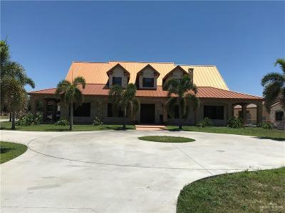 McAllen Single Family Home For Sale: 10208 N Bentsen Road
