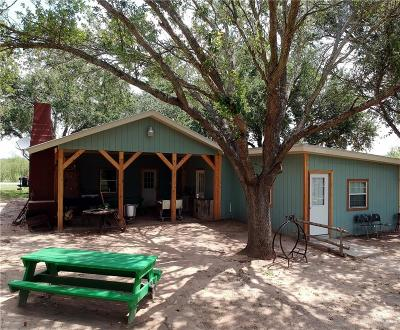 Edinburg Single Family Home For Sale: 3324 N Terry Road