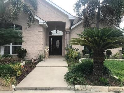Pharr Single Family Home For Sale: 55 Glenway Boulevard