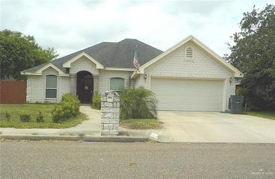 Single Family Home For Sale: 802 Treyson Drive