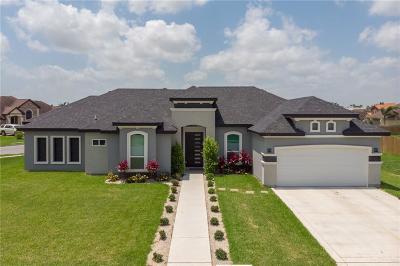 Weslaco Single Family Home For Sale: 701 Santa Fe Street