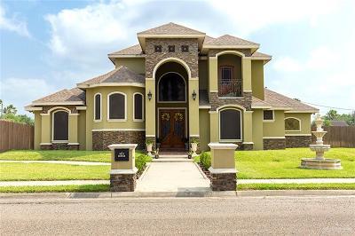 Edinburg Single Family Home For Sale: 5014 Hudson Street