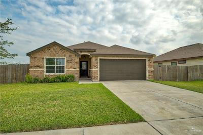 Harlingen Single Family Home For Sale: 8813 Curlew Street