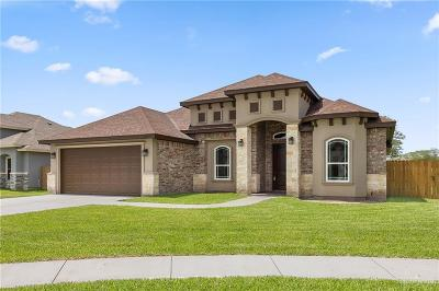 Harlingen Single Family Home For Sale: 16757 Barger Court