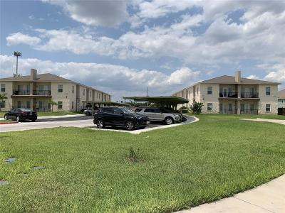 McAllen TX Multi Family Home For Sale: $3,200,000