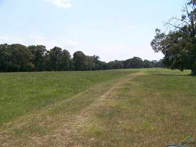 Acreage For Sale: County Road 1409