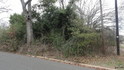 Residential Lots & Land For Sale: 120 South