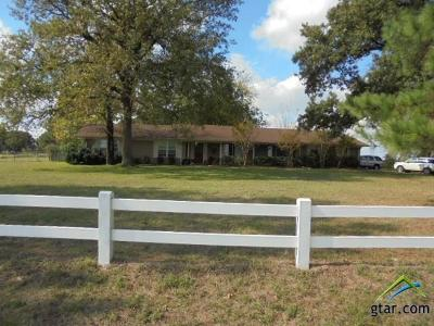 Lindale Single Family Home For Sale: 22740 County Road 448