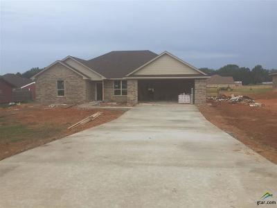 Whitehouse Single Family Home For Sale: 17692 County Road 2195 (Maji Road)