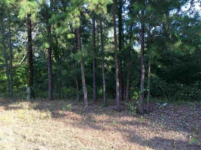 Residential Lots & Land For Sale: County Road 2220