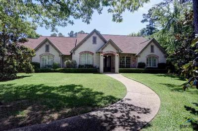 Tyler Single Family Home For Sale: 201 Saddlecreek Drive