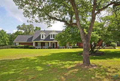 Lindale Single Family Home For Sale: 13037 Shadow Ridge Rd.