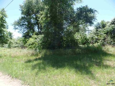 Residential Lots & Land For Sale: 900 Block Sims
