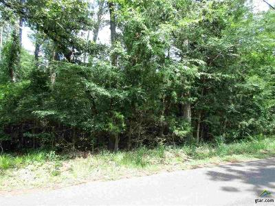 Residential Lots & Land For Sale: Lakeview Dr