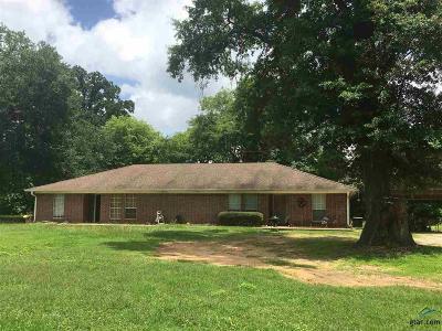 Flint Multi Family Home For Sale: 20337 Fm 2493