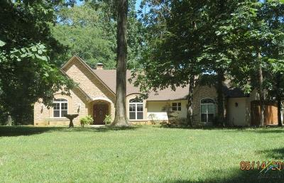 Tyler Single Family Home For Sale: 15321 County Road 285