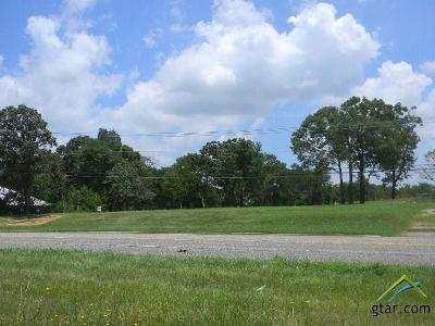 Athens Commercial For Sale: 1005 S Palestine