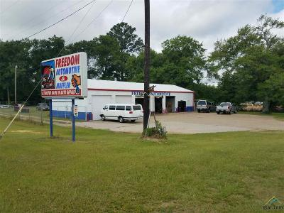 Tyler Commercial For Sale: 11655 Hwy 64 West