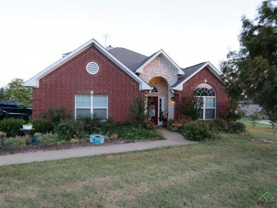 Lindale Single Family Home For Sale: 16861 Stallion Shores Ct.