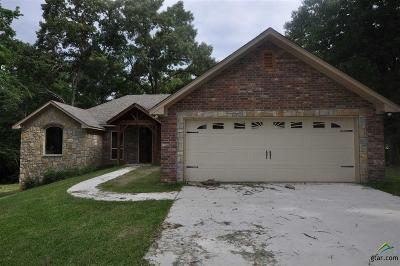 Flint Single Family Home For Sale: 17017 Hickory Trail