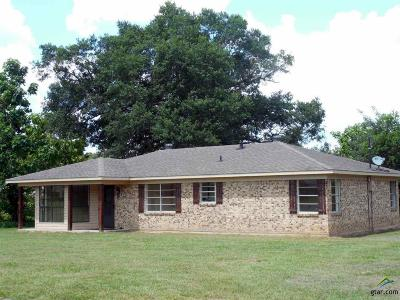 Lindale Single Family Home For Sale: 15046 County Road 431 (Jim Hogg Road)