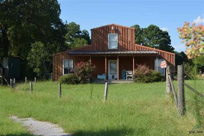 Tyler Single Family Home For Sale: 15322 County Road 472