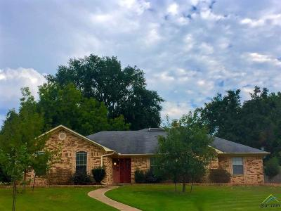 Flint Single Family Home For Sale: 18304 Woodhollow
