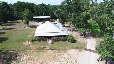 Kilgore Single Family Home For Sale: 13945 County Road 288