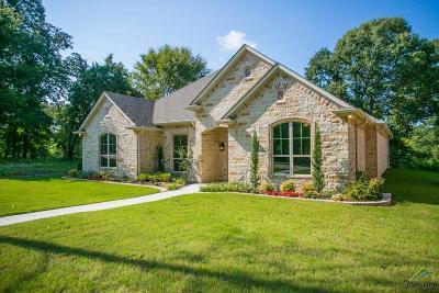 Tyler Single Family Home For Sale: 3848 Hogan Dr.