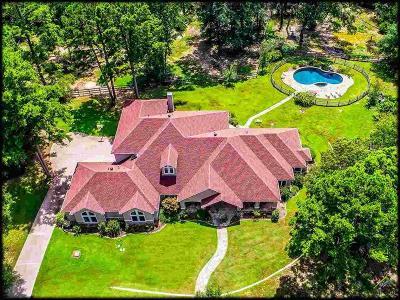 Tyler Single Family Home For Sale: 19710 Copperoaks Dr.